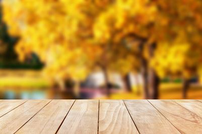 Wood deck with fall scene
