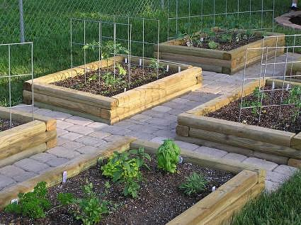 Use pressure treated wood for raised garden beds prowood lumber for Pressure treated wood for garden