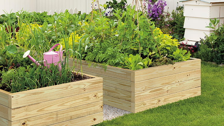 Gardening and landscaping prowood lumber for Pressure treated wood for garden